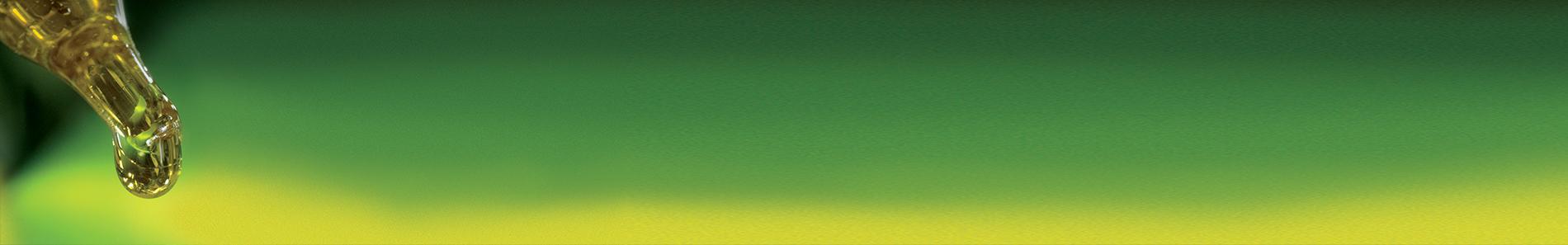 bandeau-chanvrierex1900x300-cosmetique